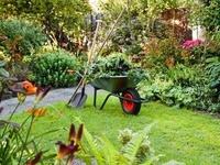 Landscape Maintenance Package