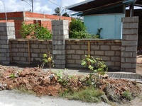 Wall building and plastering
