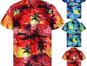Palm Tree Printed Shirts
