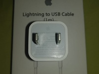 OEM Apple iPhone Wall Adaptor and Cable