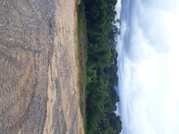 Residential Lots and Acres