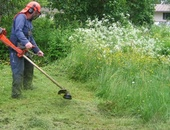 Ali's Lawn Maintenance and Landscaping Services
