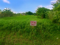 One acre Joyce Road South Chaguanas