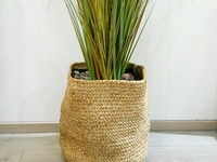Pottery Barn Braided Basket