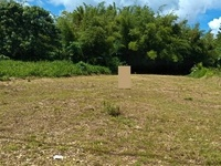 14,543 sf Freehold Land