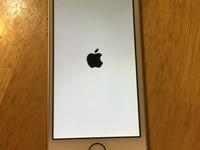 FS Apple iPhone 5s Gold - 16GB