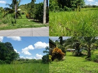 Freehold approved land, Couva