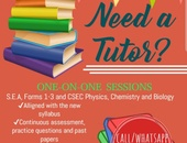PRIVATE TUTOR Primary and Secondary School