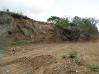 10,000 s/f Land - Scarborough, Tobago