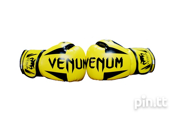 Boxing Gloves-8