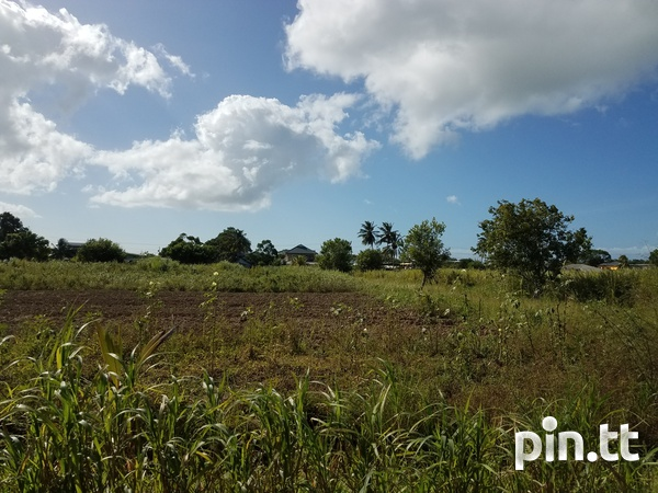 Two Acres Brickfield-1
