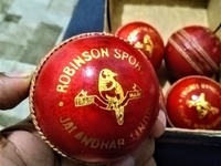 RS leather cricket balls