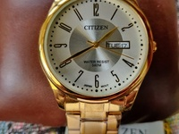 Citizen Gold Plated Men's Watch New
