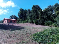 2 plots - Bucket Corner Rio Claro with outline approval