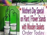 Plant / Flower Stands
