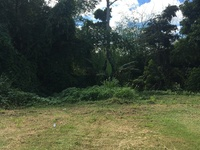 Approved Land, Couva