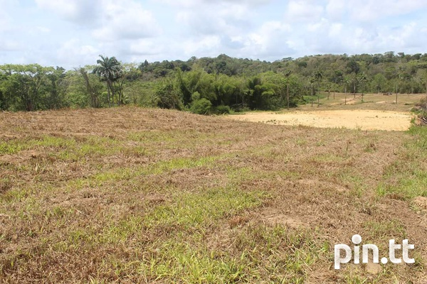 Land in Todds road-3