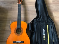 Bella Acoustic guitar and case