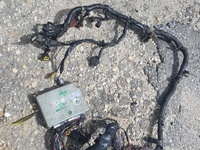 Ga15 brain and harness