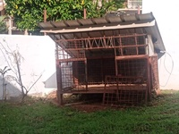 DOG KENNEL - NEGOTIABLE