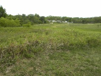 8.63 Acres Mafeking Rd. Mayaro. T/C Outline Approval Granted