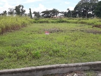 Approved land in a desirable community in Chaguanas