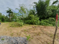 3 Lots Blanchisseuse Road