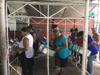 Private Steel Pan and Music Theory Classes