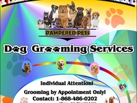 Pampered Pets Dog Grooming Serv