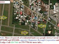 PETERSFIELD Caroni residential lot