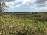 6 Acres Debe Land