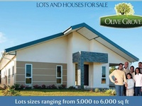 Olive Groove Lots Available, Mc Bean Couva