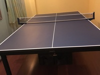 Table tennis table in excellent condition