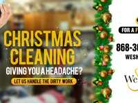 Professional XMAS Cleaning
