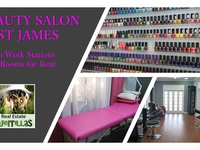 PROFESSIONAL SPACE IN ST JAMES FOR BEAUTY AND HEALTH PRACTITIO