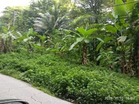 EMR Manzanilla 10 Acres Freehold Land