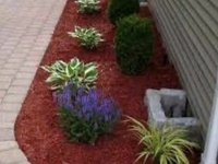 Red Or Brown Mulch