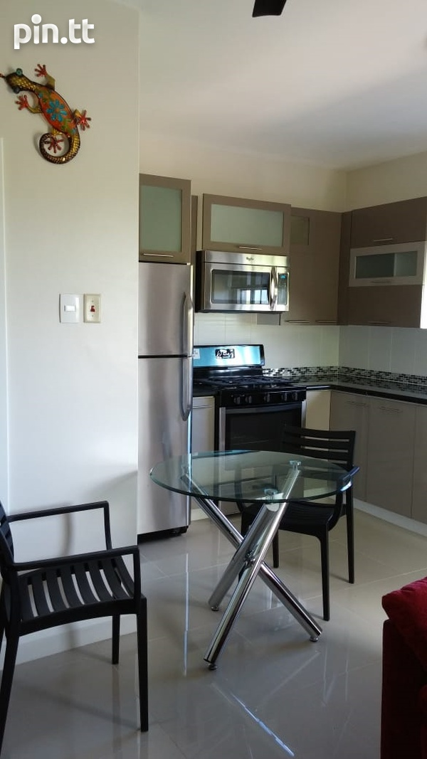 Executive Fully Furnished-2