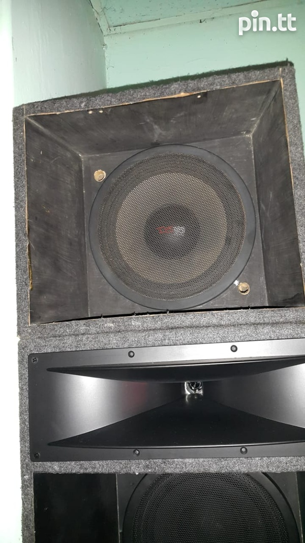 A pair of DS18 ten inch-2