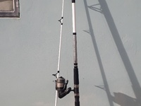12ft fishing rod with reel