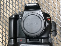 Canon Rebel T3 with 24-105 F4 L