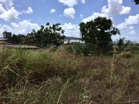 Freehold Land, Calcutta Number 3, Couva
