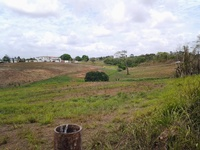 FREEPORT 16 ACRES WITH FULL APPROVALS FOR EIGHT PLOTS