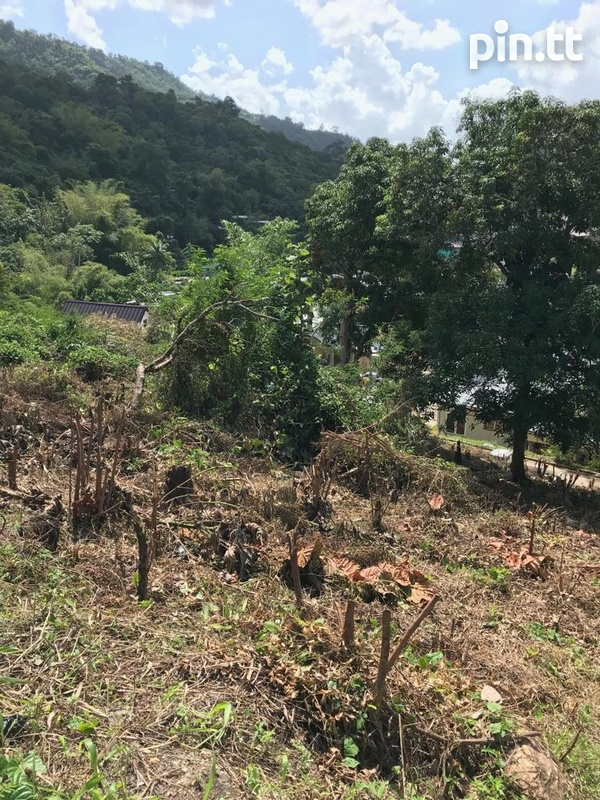 Maracas, St Joseph Land 12,070SQFT-4