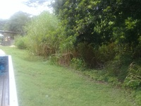 4 acres land LaLune Moruga