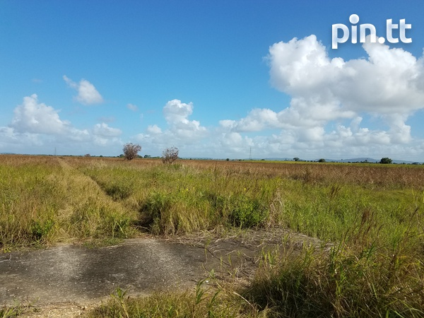 Two Acres Brickfield-3