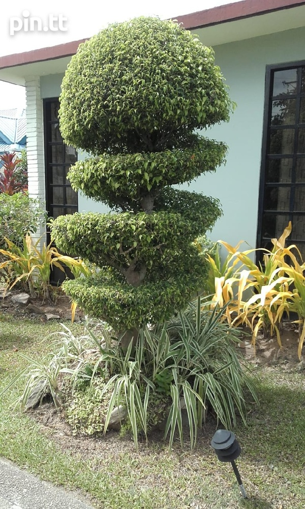Landscaping Services-5