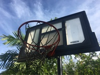 Lifetime Basketball Hoop