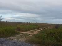 2 Acres Agriculture land Couva/Waterloo