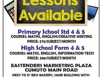 Primary And Secondary School Lessons